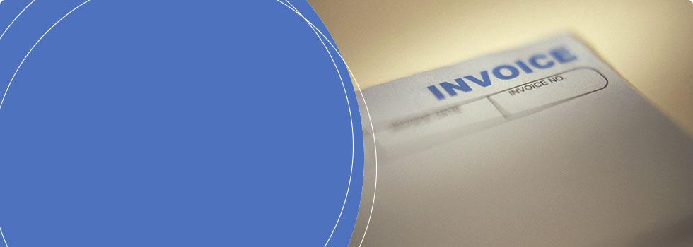 Swift Fox Software Banner